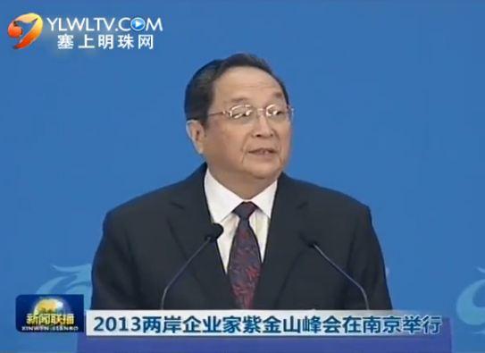 2013两岸企业家紫金山峰会在南京举行