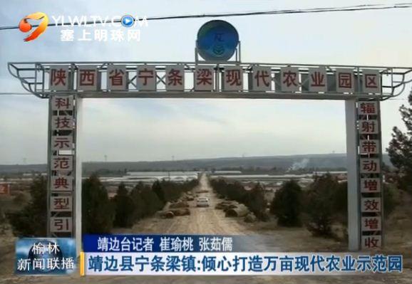 靖边县宁条梁镇:倾心打造万亩现代农业示范园