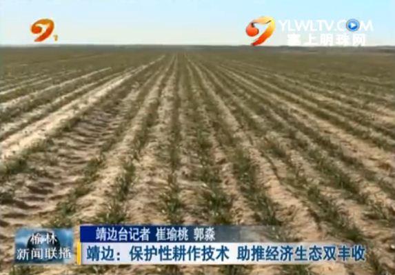 靖边:保护性耕作技术助推经济生态双丰收