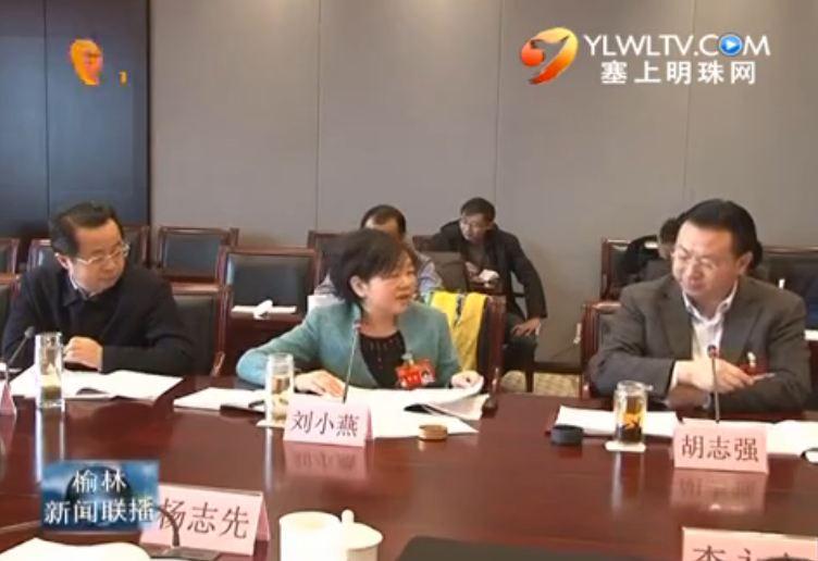 点击观看《刘小燕参加我市代表团审议时要求坚持稳中求进稳中有为加快转方式调结构步伐》