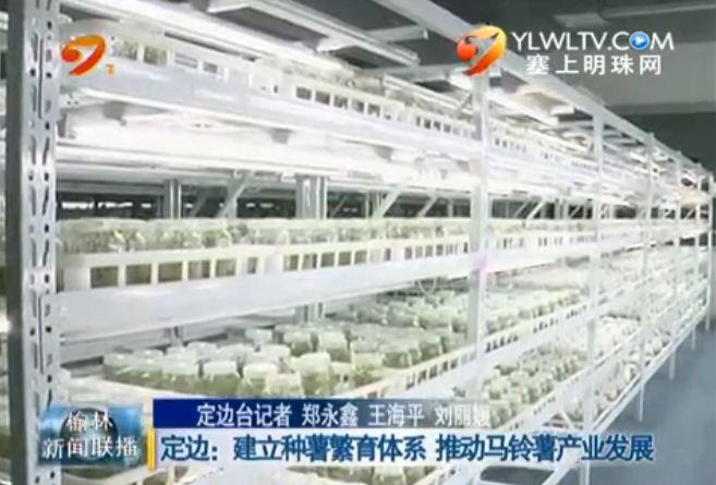 点击观看《定边:建立种薯繁育体系推动马铃薯产业发展》
