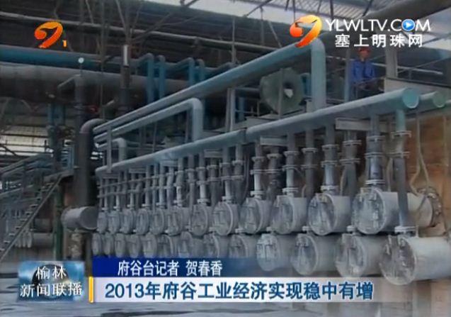 点击观看《2013年府谷工业经济实现稳中有增》