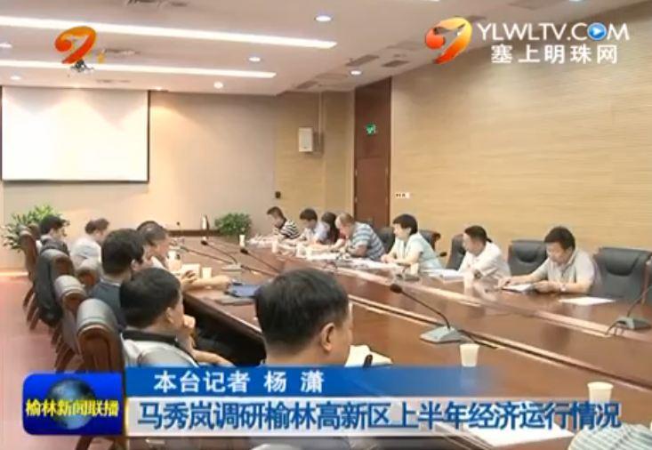 点击观看《马秀岚调研榆林高新区上半年经济运行情况》