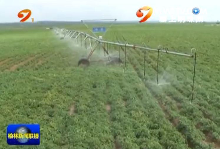 点击观看《高效节水灌溉技术助力现代农业》