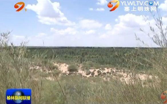 点击观看《榆阳区女子民兵治沙连坚持治沙40年 万亩沙漠变绿洲》