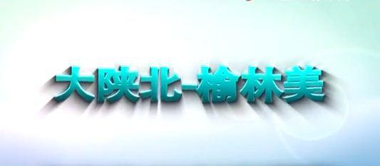 点击观看《榆林版小苹果《大陕北—榆林美》公益微电影》