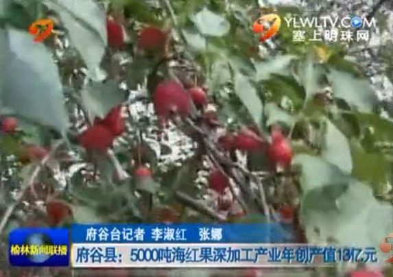 点击观看《府谷县:5000吨海红果深加工产业年创产值13亿元》