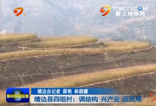 点击观看《靖边县四咀村:调结构 兴产业 促发展》
