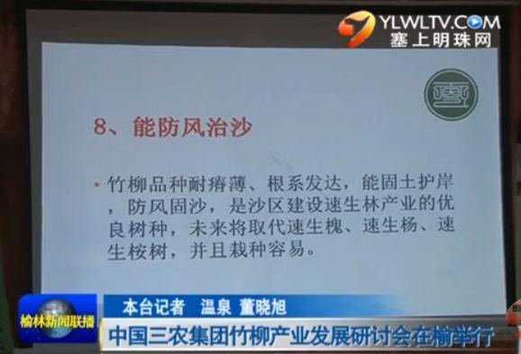 点击观看《中国三农集团竹柳产业发展研讨会在榆举行》