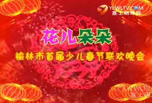 """2015""""花儿朵朵""""榆林市首届少儿春节联欢晚会(下)"""
