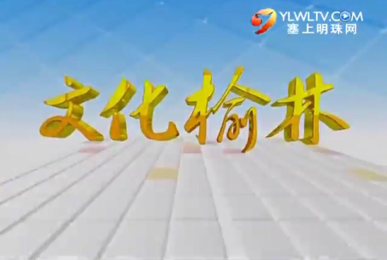 文化榆林_2015-04-24