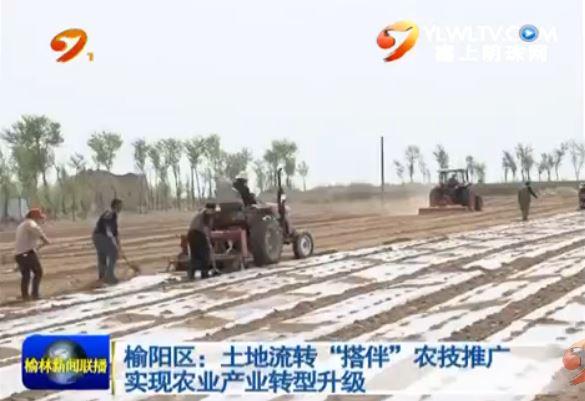"""榆阳区:土地流转""""搭伴""""农技推广 实现农业产业转型升级"""