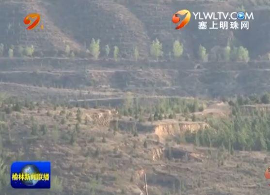 神木县:打造山体森林公园 建设城市后花园