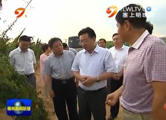 点击观看《胡志强到榆林现代农业科技示范园调研时强调:加快科技成果推广应用 带动农业发展农民增收》