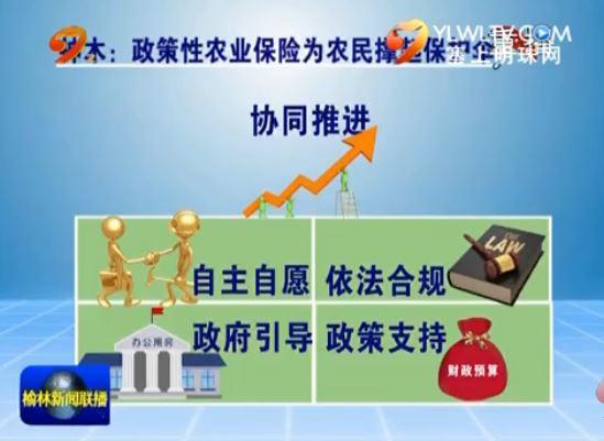 """神木:政策性农业保险为农民撑起""""保护伞"""""""