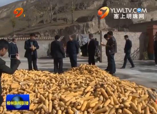 定边县:精准扶贫让百姓脱离贫困