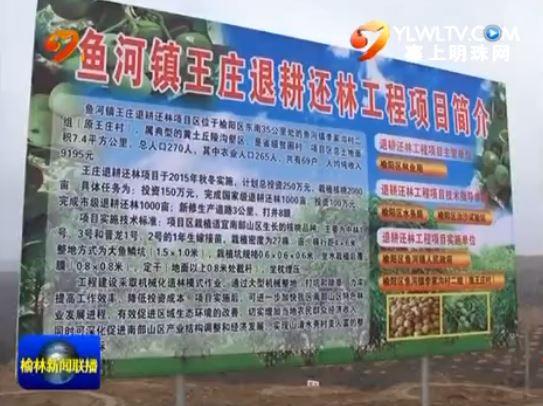 榆阳区鱼河镇:依靠土地流转 促进产业发展