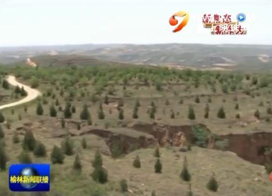 """神木县:今年计划造林12万亩打好""""十三五""""林业开局"""
