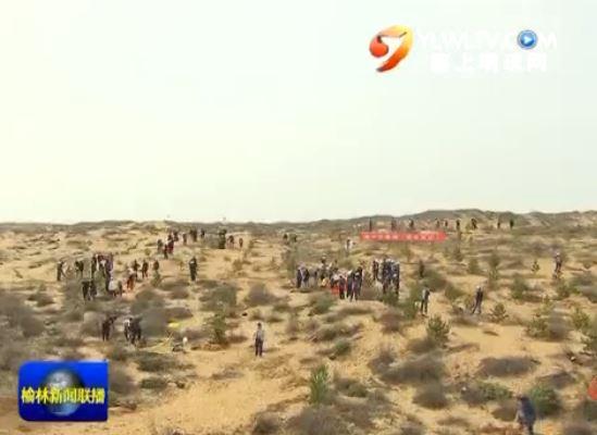 点击观看《胡志强 尉俊东 刘春桥等四大班子领导参加义务植树活动》