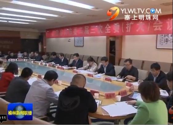民建榆林市委:认真履行职能 助推经济发展