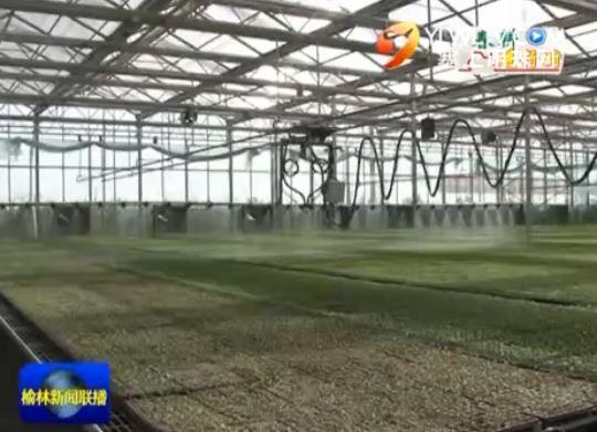 定边县白泥井镇:科学谋划现代农业 智慧春耕助力发展