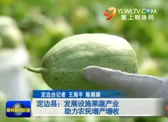 定边县:发展设施果蔬产业 助力农民增产增收