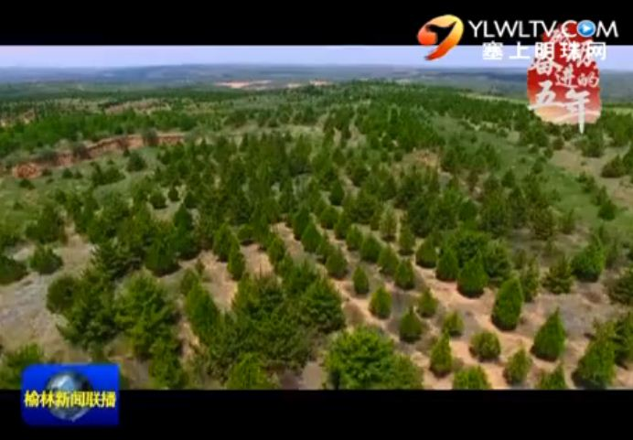 系列报道《砥砺奋进的五年》 绿色成为榆林发展的厚重底色