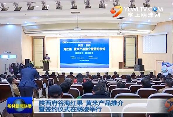 陕西府谷海红果 黄米产品推介暨签约仪式在杨凌举行