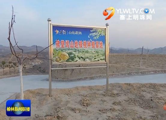 子洲县林场村 推进五大工程 实现村强民富