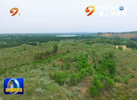 榆林:沙土变沃土 沙区群众享受生态果实