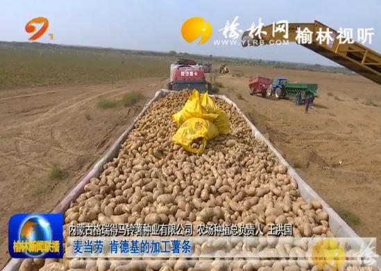 榆林现代特色农业发展势头强劲