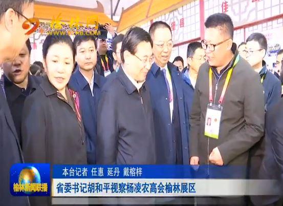 点击观看《省委书记胡和平视察杨凌农高会榆林展区》