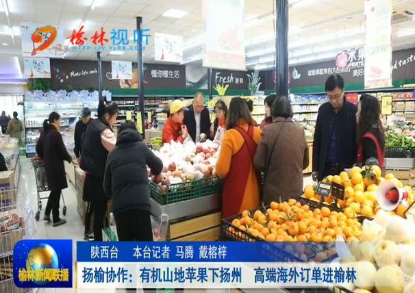 点击观看《扬榆协作:有机山地苹果下扬州 高端海外订单进榆林》
