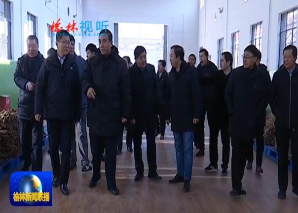 点击观看《国家卫健委副主任李斌在子洲清涧调研精准扶贫工作》