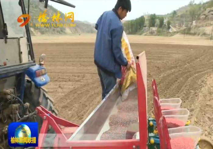 米脂:推广种肥同播 助农降本增收