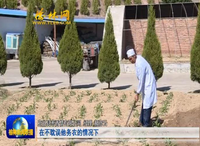 点击观看《府谷碛塄农业园区:因户施策抓脱贫 措施得力提信心》