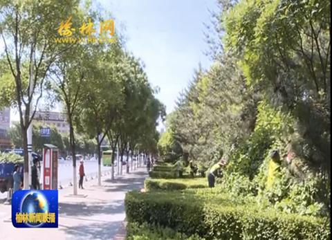 府谷:加强园林绿化建设 打造绿色宜居县城