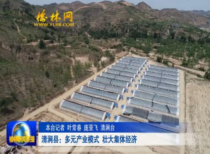 清涧县:多元产业模式 壮大集体经济