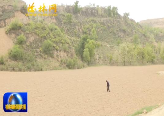 """横山北庄村蹲点日记(一):土地流转""""转""""出脱贫致富路"""