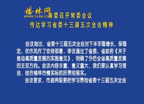 市委召开常委会议 传达学习省委十三届五次全会精神