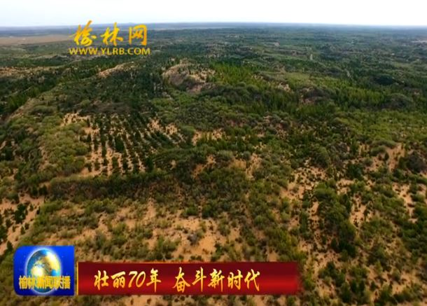 毛乌素奇迹:七十年战天斗地 八百里黄沙披绿