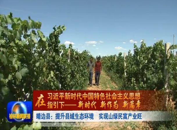 点击观看《靖边县:提升县域生态环境 实现山绿民富产业旺》