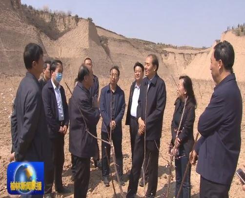"""杜寿平在府谷调研脱贫攻坚""""三农""""和造林绿化工作"""