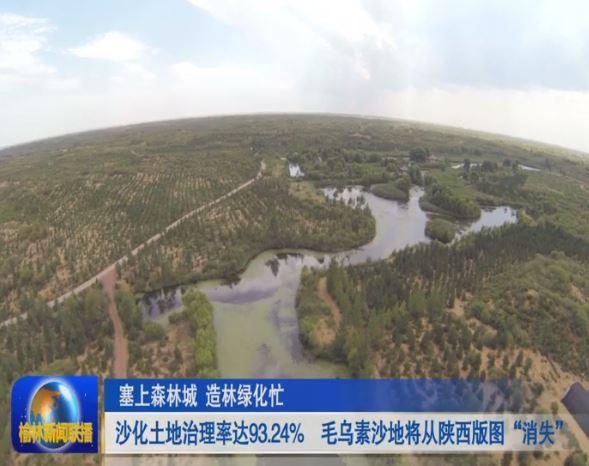 """沙化土地治理率达93.24% 毛乌素沙地将从陕西版图""""消失"""""""