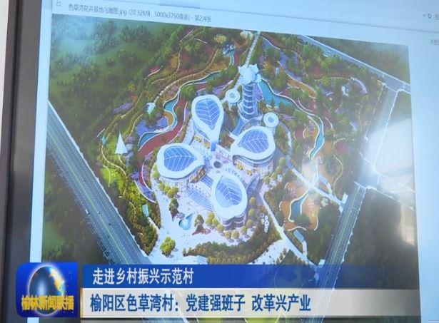 点击观看《榆阳区色草湾村:党建强班子 改革兴产业》