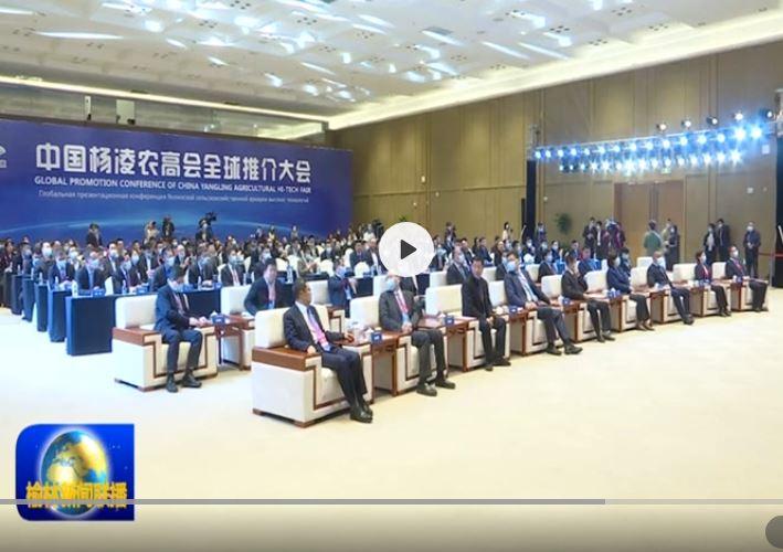 榆林展团参加农高会全球推介大会