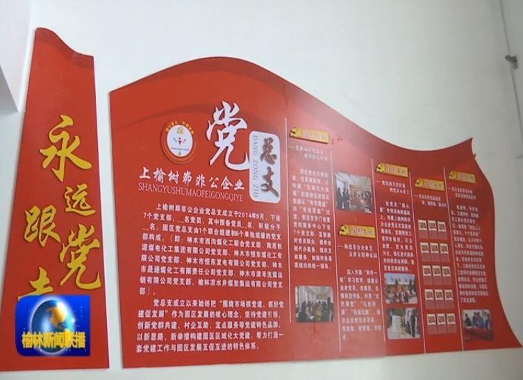 点击观看《奋斗百年路 启航新征程 神木:强化党建引领 激发企业活力》