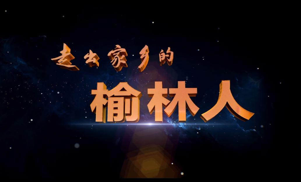 【走出家乡的榆林人】陕北女儿王二妮